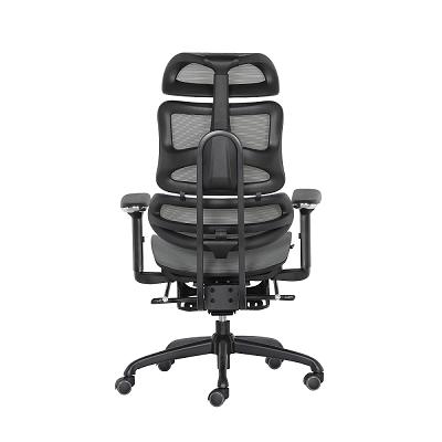 XW-B13人体工学椅_网布职员椅 -人体工学椅选购攻略